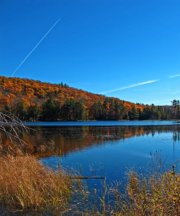 fall-forest-foliage-reflecting-on-a-blue-lake-and-wetlands--airplane-vapour-trails--autumn-colors-chantal-photopix